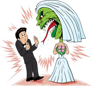 Brautzilla - Mythos oder der normale Wahnsinn?